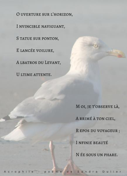 Poésie Acrophile de Sandra Dulier sur une photo de Dominique Prime - Expo Sable et Lumière 06 au 08 mars 2015 - Château de Monceau