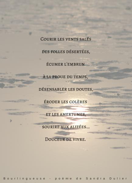 Poésie Bourlingueuse de Sandra Dulier sur une photo de Dominique Prime - Expo Sable et Lumière 06 au 08 mars 2015 - Château de Monceau