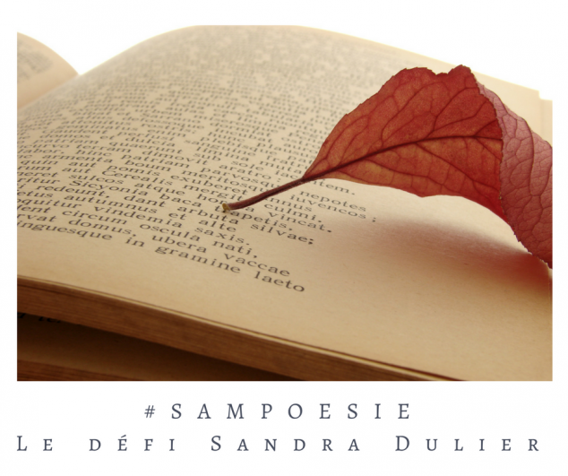 Défi Sampoésie 03 09 2016 livre automne