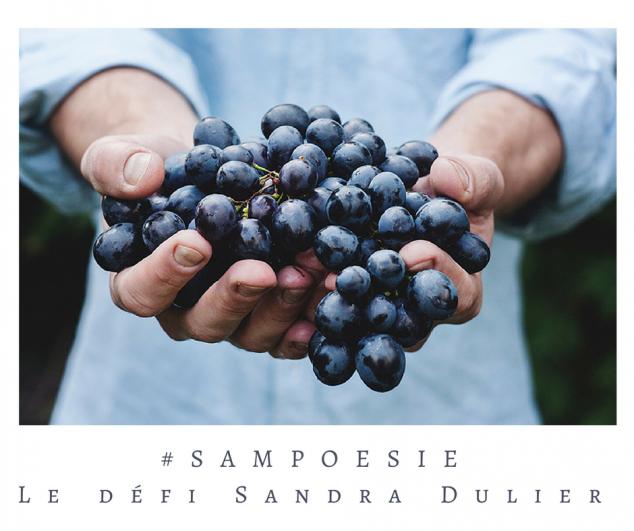 Défi Sampoésie du 15.10.2016 - atelier d'écriture - Sandra Dulier - Infos : http://www.sandradulier.com/blog/do/tag/sampoesie