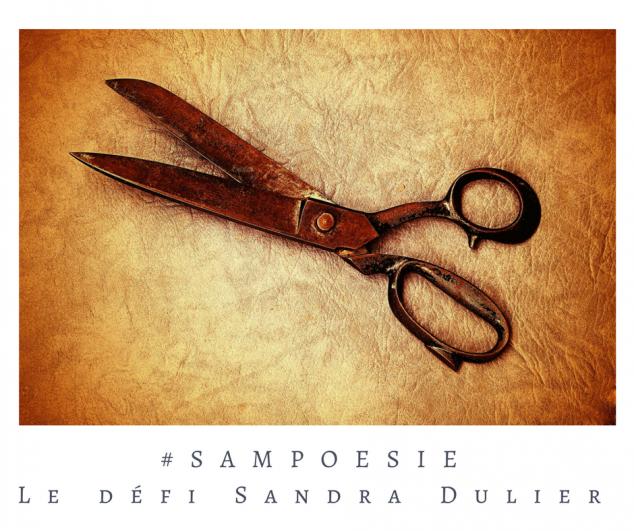 Défi Sampoésie 21.01.2017 - écriture - ciseaux - vintage