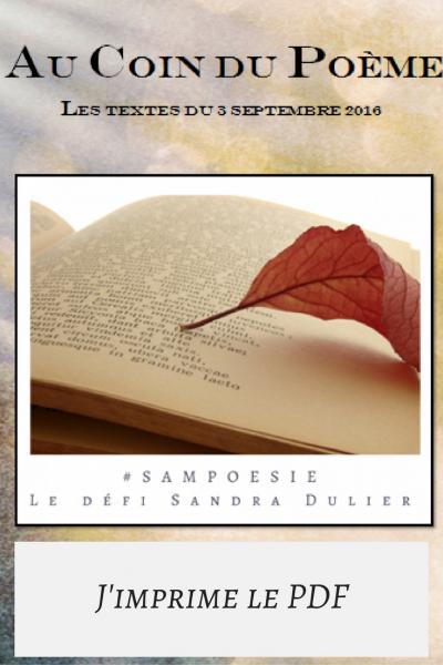Imprimer le pdf sampoesie du defi poesie du 03 09 2016