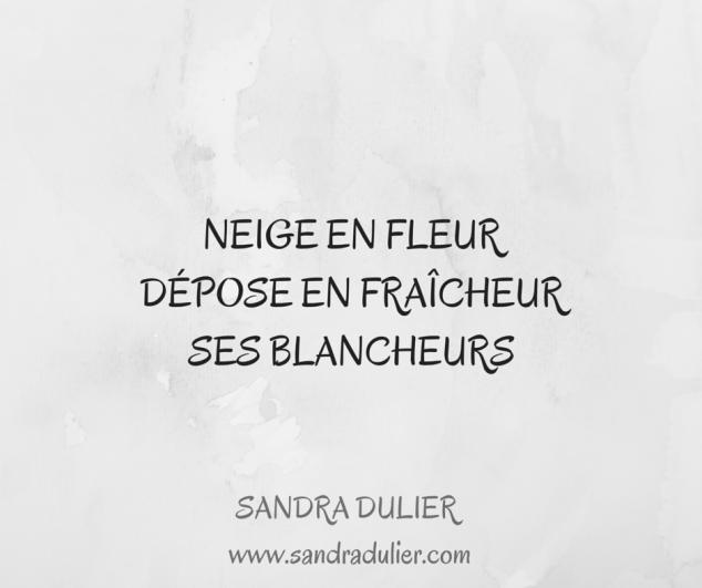 Neige en fleur / Dépose en fraîcheur / Ses blancheurs Découvrir d'autres haïkus sur http://www.sandradulier.com/blog/la-poesie-de-la-semaine/7-haikus.html