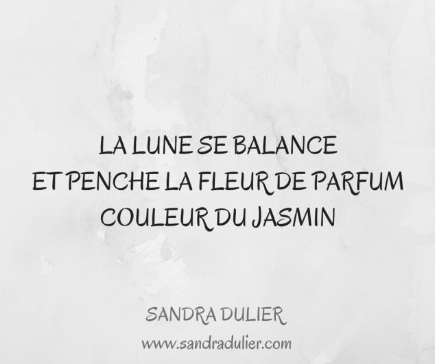 Haïku : La lune se balance / Et penche la fleur de parfum / Couleur du jasmin  © Sandra Dulier