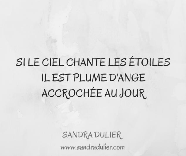 Haïku : Si le ciel chante les étoiles / Il est plume d'ange / Accrochée au jour © Sandra Dulier