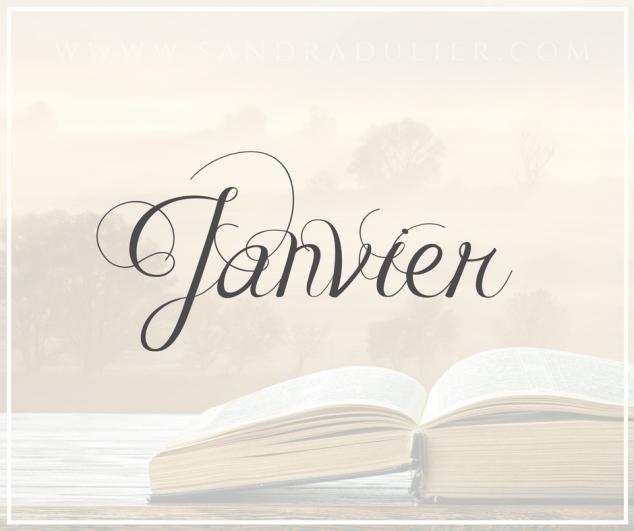 Janvier - livre - bullet journal Plus d'infos sur http://www.sandradulier.com/blog/les-parfums-de-saison/pourquoi-j-aime-janvier.html