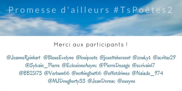 Merci à tous les participants #Tspoètes2 Toutes les infos sur http://www.sandradulier.com/blog/tspoetes2.html