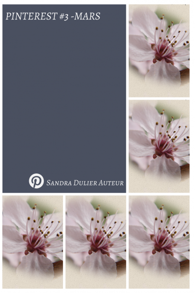 Pinterest 3 mars pin