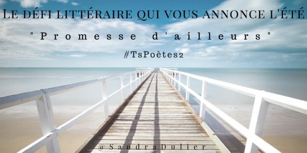 Découvrir le poème réalisé à partir des tweets proposés par les 24 participants de notre belle Francophonie pour le défi #TsPoètes2 sur http://www.sandradulier.com/blog/promesses-d