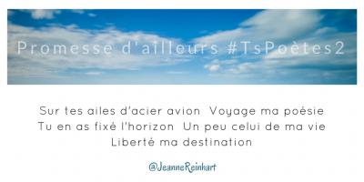 Tweet 1 - Découvrir le poème réalisé à partir des tweets proposés par les 24 participants de notre belle Francophonie pour le défi #TsPoètes2 sur http://www.sandradulier.com/blog/promesses-d-ailleurs-le-poeme-tspoetes2.html