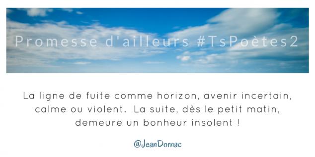 Tweet 17 - Découvrir le poème réalisé à partir des tweets proposés par les 24 participants de notre belle Francophonie pour le défi #TsPoètes2 sur http://www.sandradulier.com/blog/promesses-d-ailleurs-le-poeme-tspoetes2.html