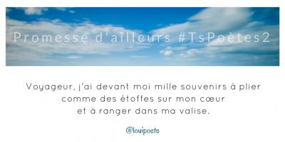 Tweet 22 - Découvrir le poème réalisé à partir des tweets proposés par les 24 participants de notre belle Francophonie pour le défi #TsPoètes2 sur http://www.sandradulier.com/blog/promesses-d-ailleurs-le-poeme-tspoetes2.html