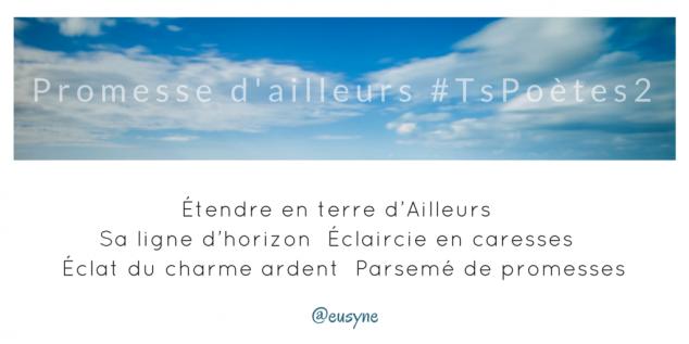 Tweet 24 - Découvrir le poème réalisé à partir des tweets proposés par les 24 participants de notre belle Francophonie pour le défi #TsPoètes2 sur http://www.sandradulier.com/blog/promesses-d-ailleurs-le-poeme-tspoetes2.html