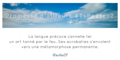 Tweet 29 -  Découvrir le poème réalisé à partir des tweets proposés par les 24 participants de notre belle Francophonie pour le défi #TsPoètes2 sur http://www.sandradulier.com/blog/promesses-d-ailleurs-le-poeme-tspoetes2.html
