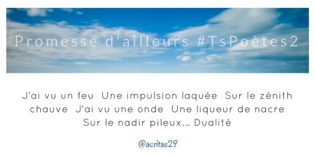 Tweet 40 - Découvrir le poème réalisé à partir des tweets proposés par les 24 participants de notre belle Francophonie pour le défi #TsPoètes2 sur http://www.sandradulier.com/blog/promesses-d-ailleurs-le-poeme-tspoetes2.html
