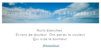 Tweet 44 - Découvrir le poème réalisé à partir des tweets proposés par les 24 participants de notre belle Francophonie pour le défi #TsPoètes2 sur http://www.sandradulier.com/blog/promesses-d-ailleurs-le-poeme-tspoetes2.html