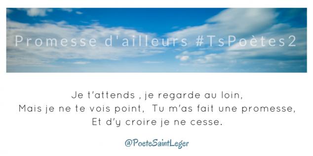 Tweet 46 - Découvrir le poème réalisé à partir des tweets proposés par les 24 participants de notre belle Francophonie pour le défi #TsPoètes2 sur http://www.sandradulier.com/blog/promesses-d-ailleurs-le-poeme-tspoetes2.html