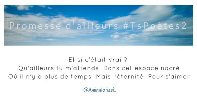 Tweet 48 - Découvrir le poème réalisé à partir des tweets proposés par les 24 participants de notre belle Francophonie pour le défi #TsPoètes2 sur http://www.sandradulier.com/blog/promesses-d-ailleurs-le-poeme-tspoetes2.html
