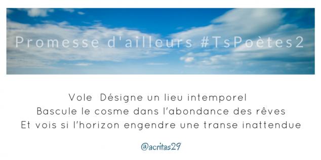 Tweet 53 - Découvrir le poème réalisé à partir des tweets proposés par les 24 participants de notre belle Francophonie pour le défi #TsPoètes2 sur http://www.sandradulier.com/blog/promesses-d-ailleurs-le-poeme-tspoetes2.html