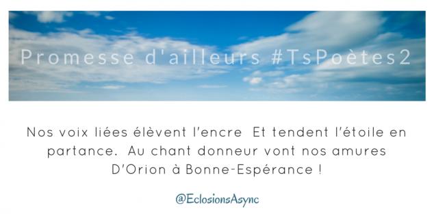 Tweet 8 - Découvrir le poème réalisé à partir des tweets proposés par les 24 participants de notre belle Francophonie pour le défi #TsPoètes2 sur http://www.sandradulier.com/blog/promesses-d-ailleurs-le-poeme-tspoetes2.html