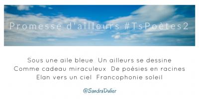 Tweet inspiration 2 - Découvrir le poème réalisé à partir des tweets proposés par les 24 participants de notre belle Francophonie pour le défi #TsPoètes2 http://sur www.sandradulier.com/blog/promesses-d-ailleurs-le-poeme-tspoetes2.html