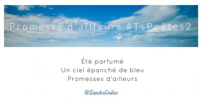 Tweet inspiration 4 - Découvrir le poème réalisé à partir des tweets proposés par les 24 participants de notre belle Francophonie pour le défi #TsPoètes2 sur http://www.sandradulier.com/blog/promesses-d-ailleurs-le-poeme-tspoetes2.html