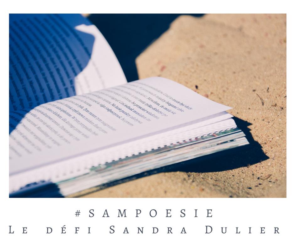Que vous inspire cette photo ? A vos poèmes #Sampoésie. Livre, plage, été, sable.
