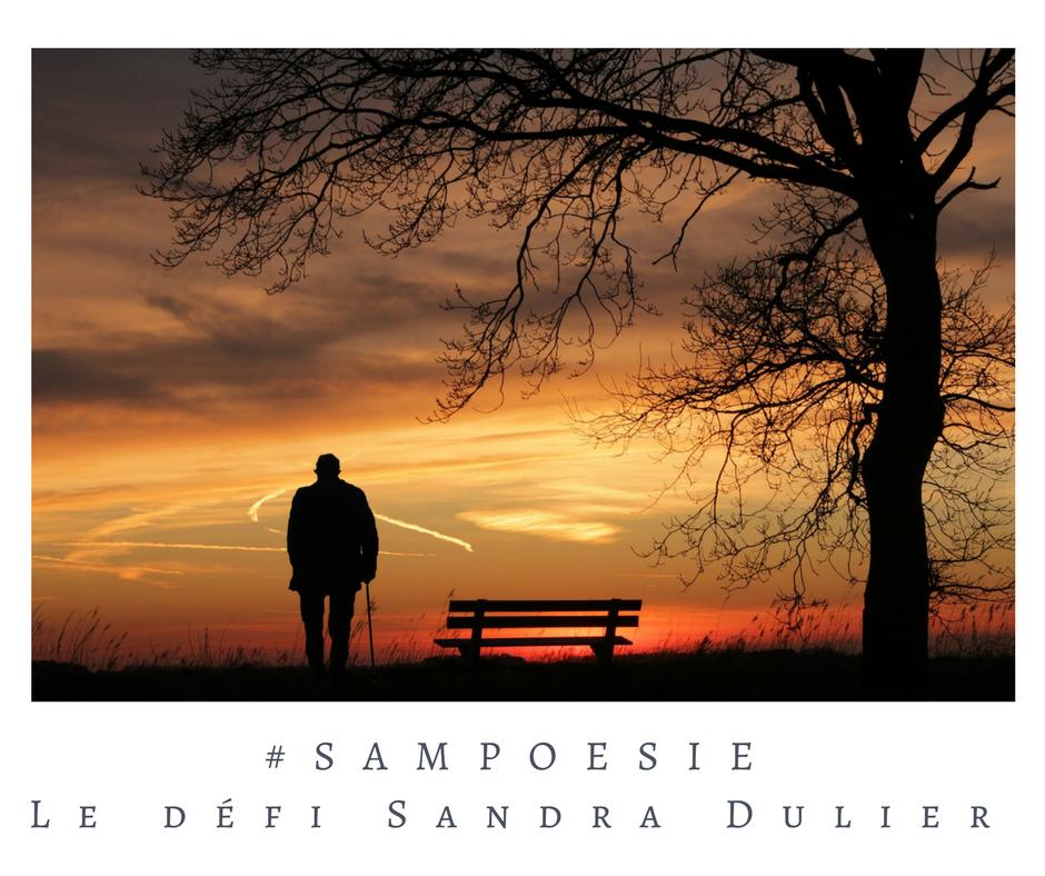 Que vous inspire cette photo ? A vos poèmes #Sampoésie. #banc #homme #vieillesse #soir #crépucsule #écrire #poésie.