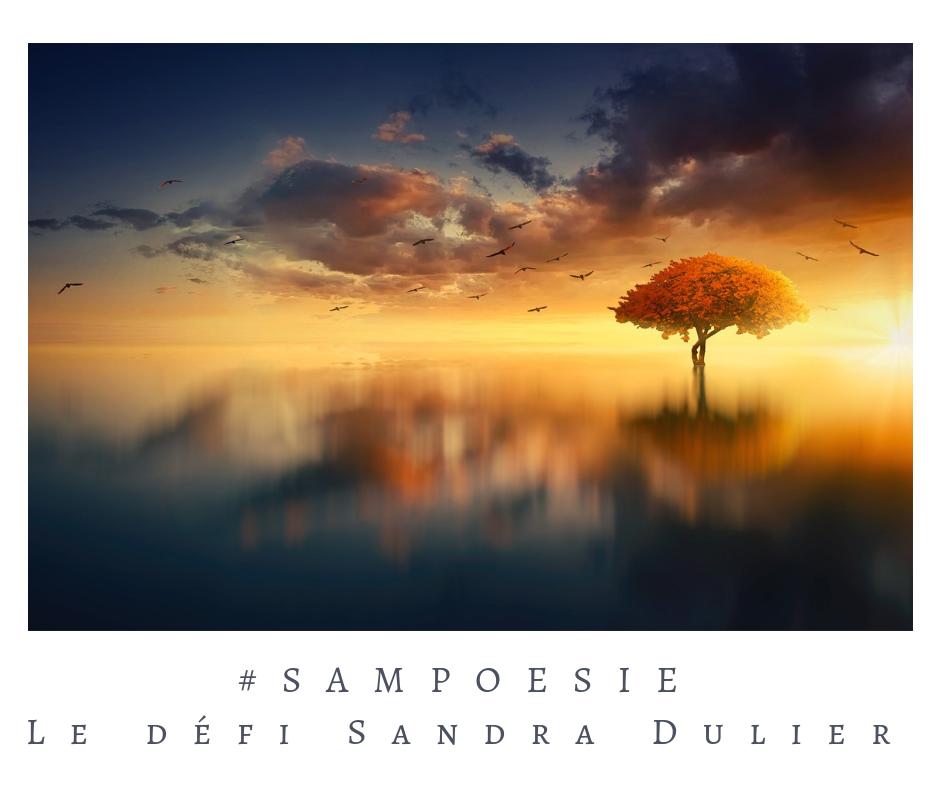 Que vous inspire cette photo ? A vos poèmes #Sampoésie. #miroir #automne #lac #novembre #poésie #écrire