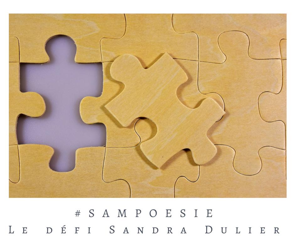 Que vous inspire cette photo ? A vos poèmes #Sampoésie. #puzzle #jeu #pièce #association #vie #écrire #poésie.