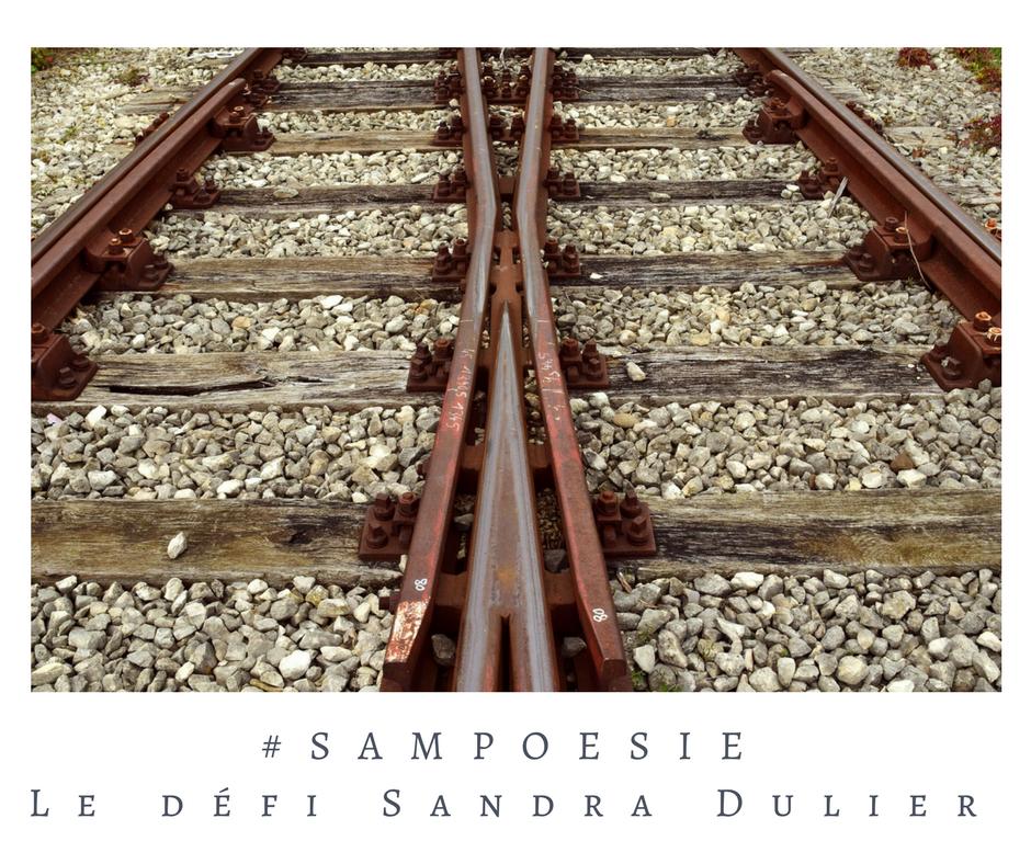 Que vous inspire cette photo ? A vos poèmes #Sampoésie. #inspiration  #rails #choix #objectifs #2018  #écrire #poésie.