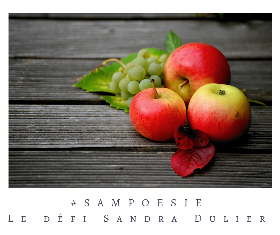 Que vous inspire cette photo ? A vos poèmes #Sampoésie. #pomme #raisin #automne #poésie
