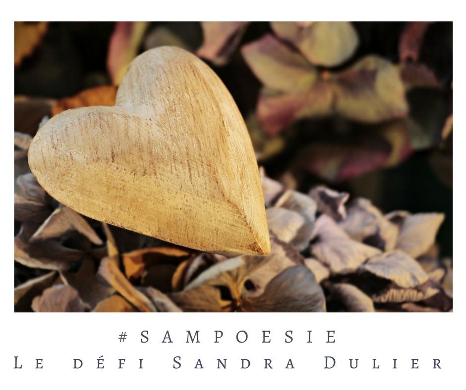 Que vous inspire cette photo ? A vos poèmes #Sampoésie. #inspiration  #saintvalentin #coeur #bois #écrire #poésie.