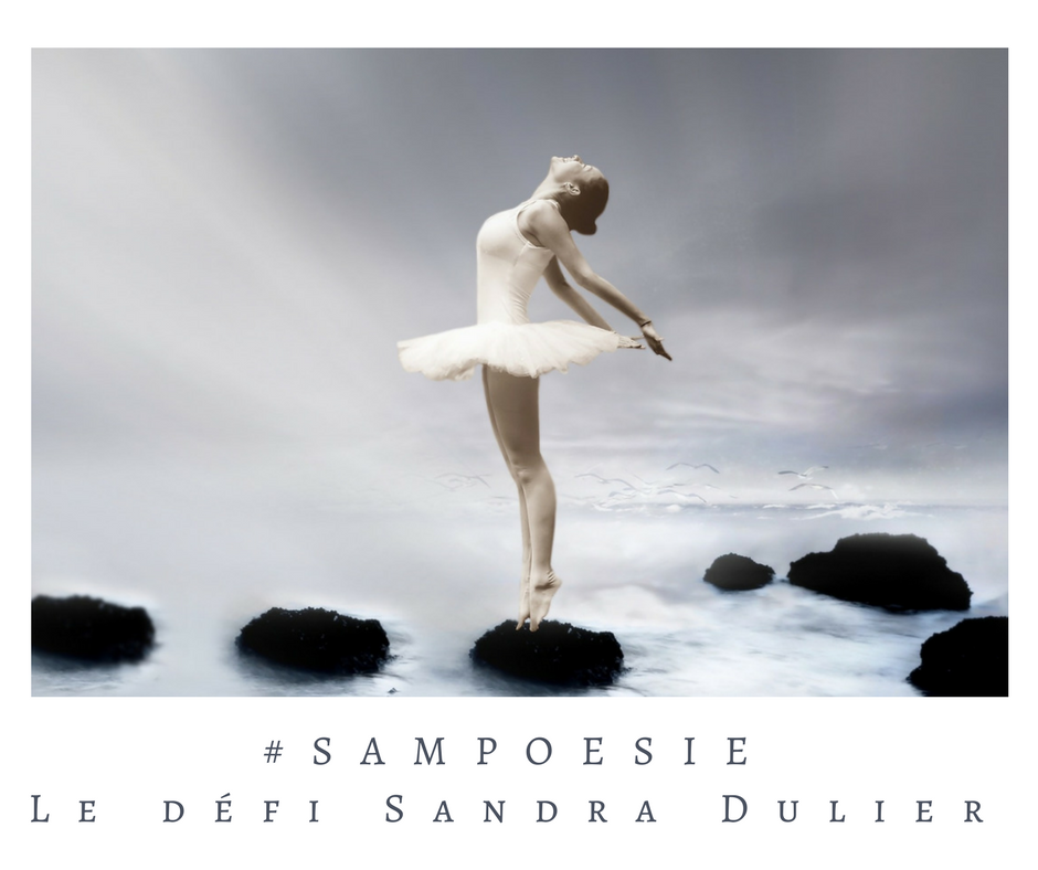 Que vous inspire cette photo ? A vos poèmes #Sampoésie. #femme #danse #tutu #mer #équilibre #écrire #poésie.
