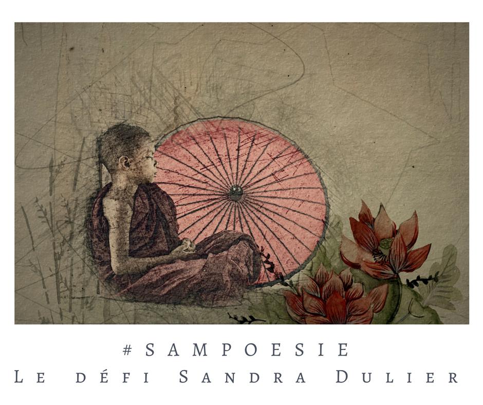 Un défi littéraire en mode zen… écrire un poème #Sampoésie.