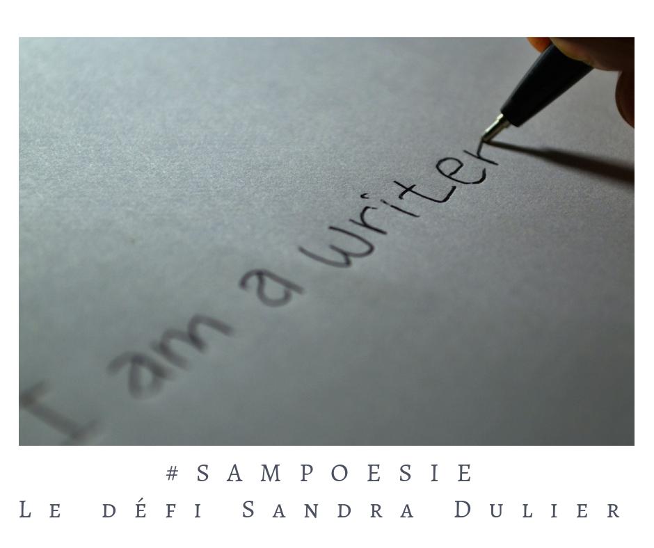 """Que vous inspire cette photo ? Stylo, papier, écrire,  auteur. """"I am a writer."""""""