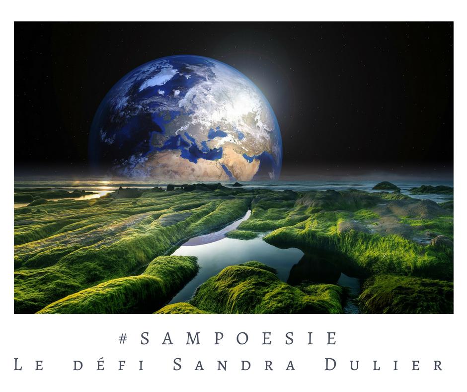 Que vous inspire cette photo ? A vos poèmes #Sampoésie. #terre #jardin #espace #collage #lune #écrire #poésie.