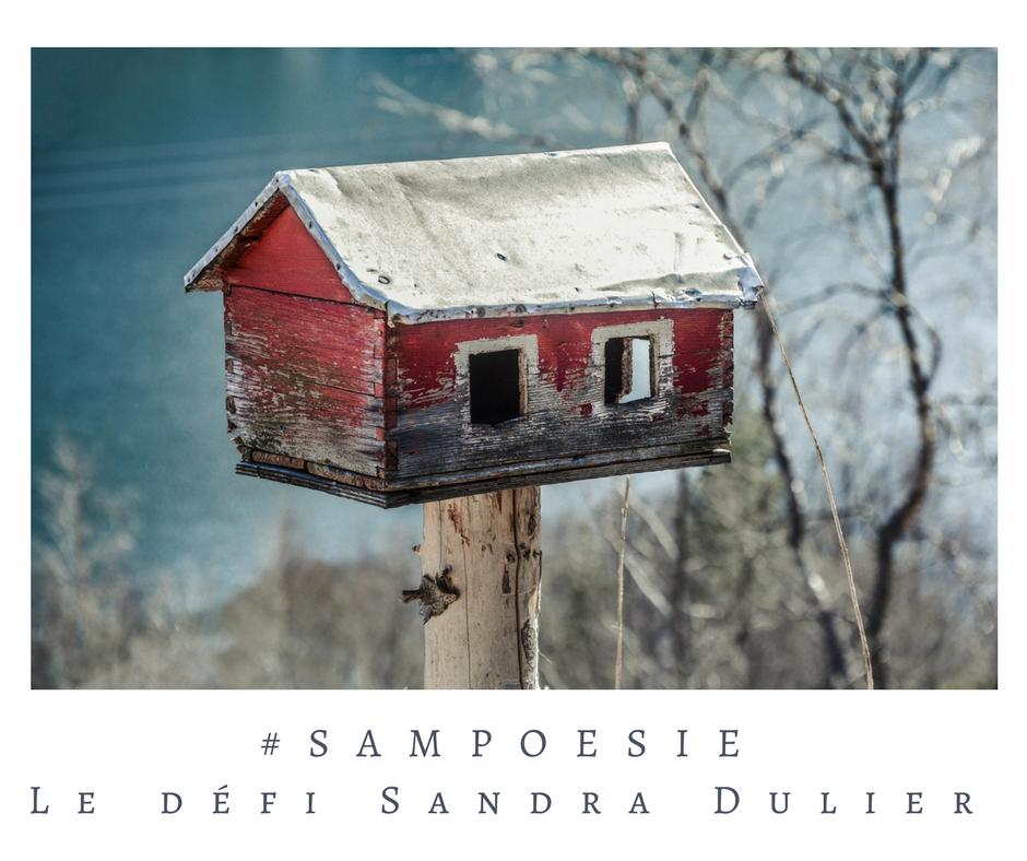 Que vous inspire cette photo ? A vos poèmes #Sampoésie. #inspiration  #maison #nichoir #hiver #mangeoire  #écrire #poésie.