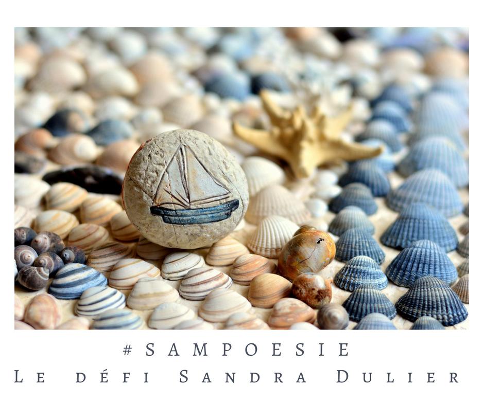 Que vous inspire cette photo ? A vos poèmes #Sampoésie. #coquillage #été #galet #mer #écrire #poésie