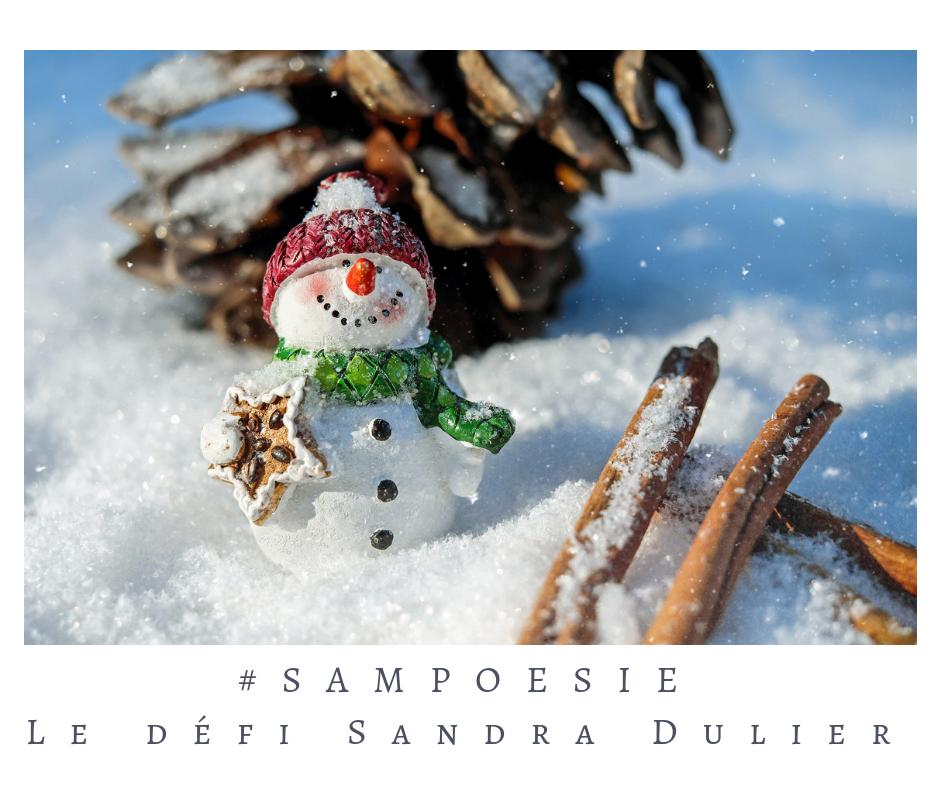Que vous inspire cette photo ? A vos poèmes #Sampoésie. #bonhomme #noël #neige #hiver # #décembre #écrire