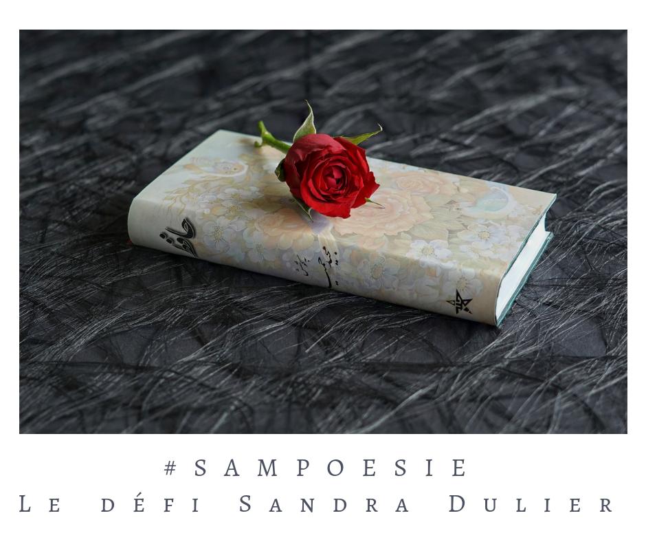 Que vous inspire cette photo ? A vos poèmes #Sampoésie. #rose #livre #romantique #noir #rouge # #poésie #écrire