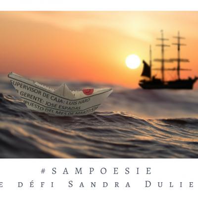 Defi sampoesie 19 05 2018