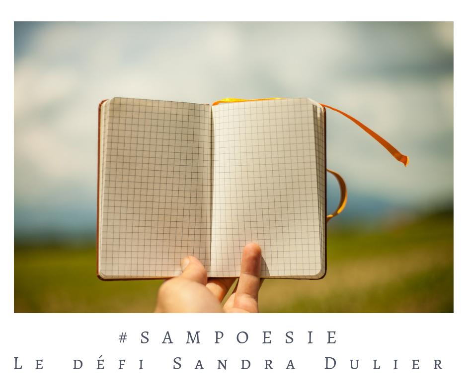 Que vous inspire cette photo ? A vos poèmes #Sampoésie. #bullet #bujo #carnet #journal #poésie #écrire