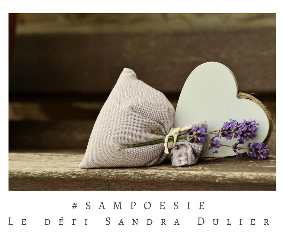 Que vous inspire cette photo ? A vos poèmes #Sampoésie. Lavande, coeur, écrire, poésie.