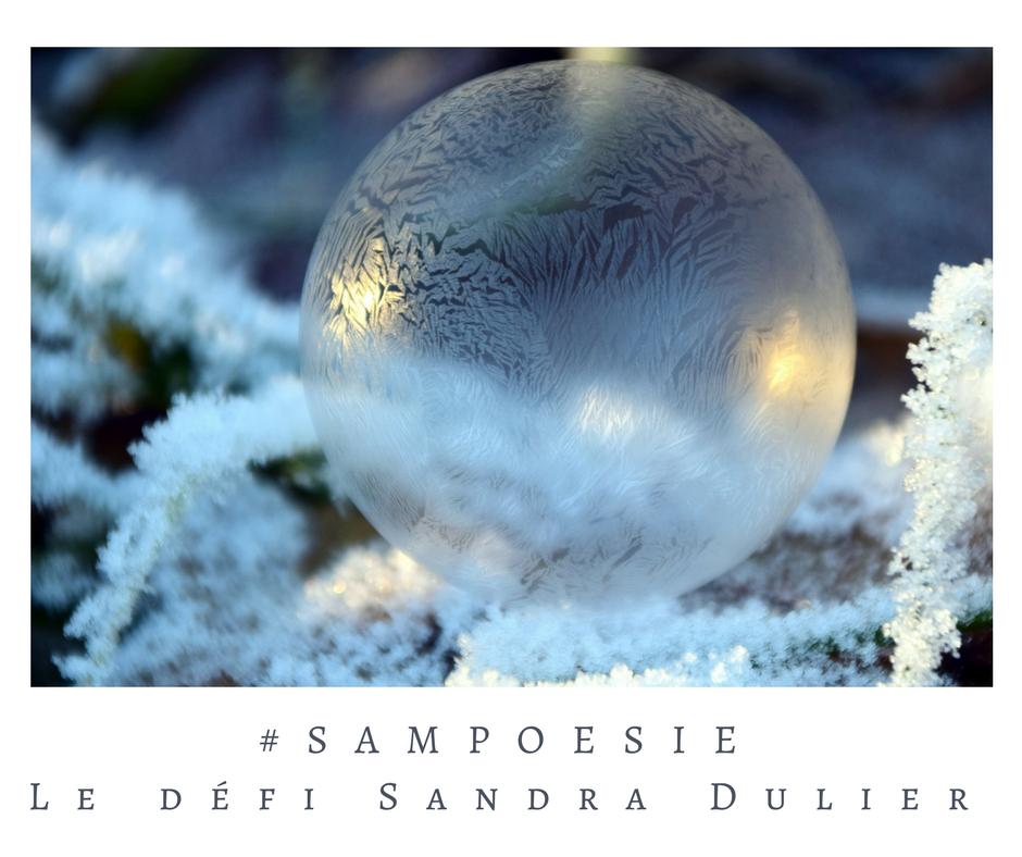 Que vous inspire cette photo ? A vos poèmes #Sampoésie. #inspiration  #boule #hiver #nature #neige #nuit #blanc #bulle #savon #écrire #poésie.