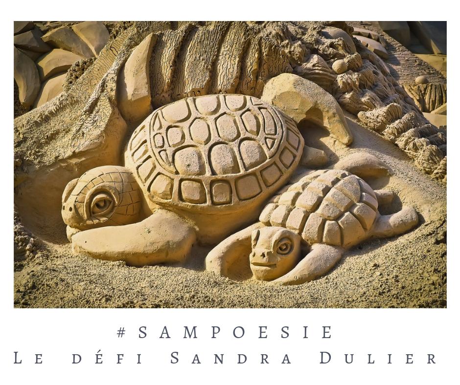 Que vous inspire cette photo ? poésie, tortue, sable, sculpture, plage, été, art