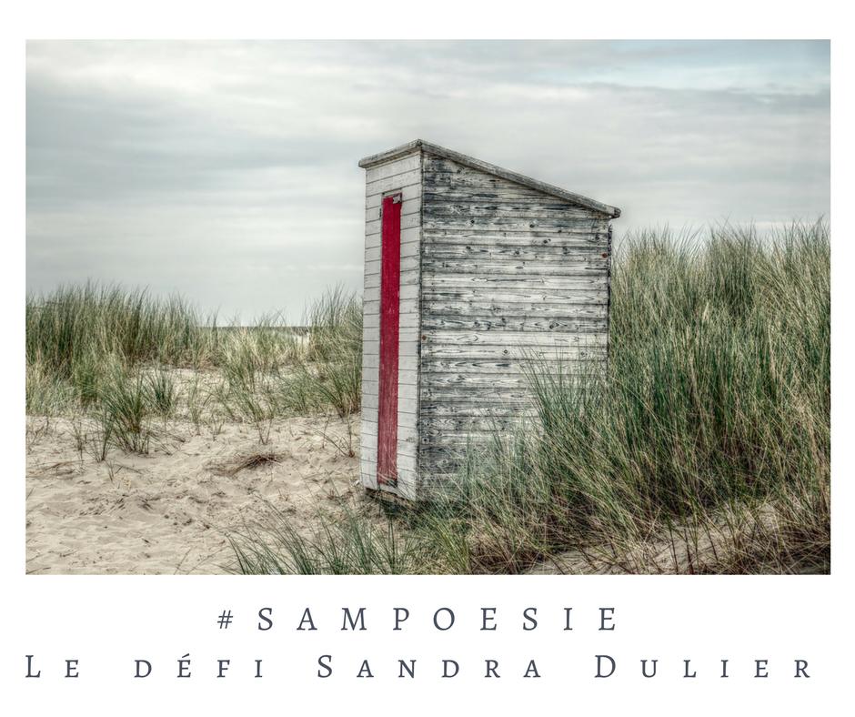 Que vous inspire cette photo ? A vos poèmes #Sampoésie. Cabine de bains, plage, mer, dune, Nord, automne, octobre, écrire, poésie.