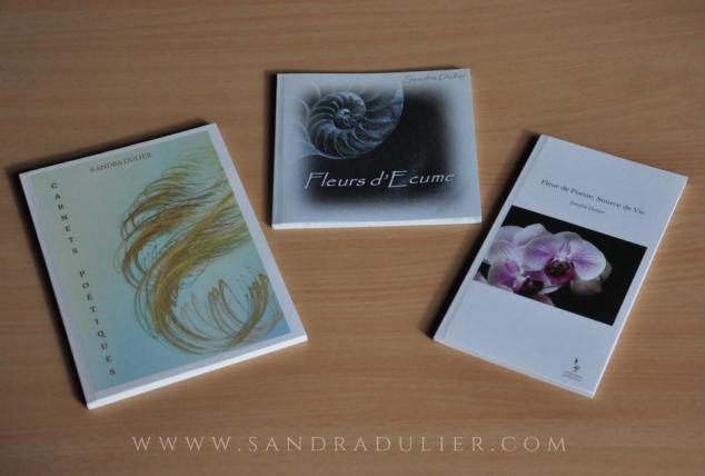 Répondez auquestionnaire sur Sandra Dulier et tentez de gagner l'un de ses 3 livres édités. Vous pouvez participer du 23 février au 23 mars 2017 (minuit). Certaines questions sont liées à l'écriture et d'autres, plus anecdotiques. Bonne chance!
