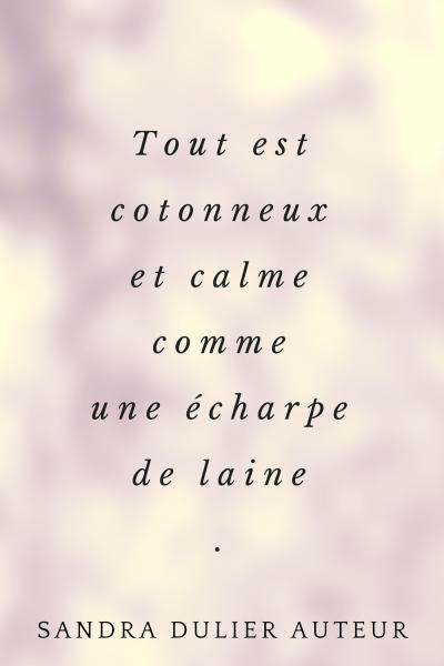 Tout est cotonneux et calme comme une écharpe de laine. Citation poésie de Sandra Dulier