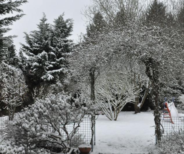Jardin neige 06 02 2018